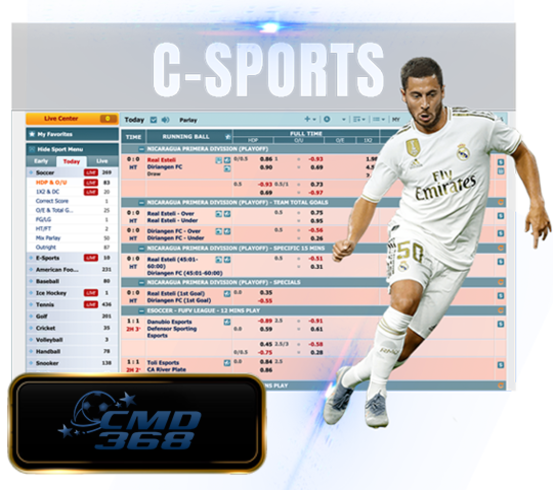 c sportsbook betting provider