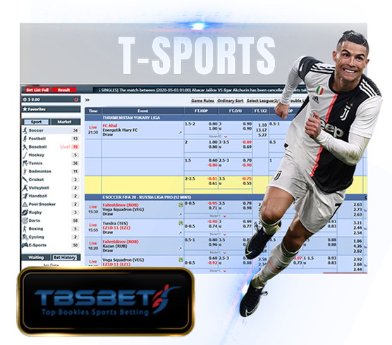 t sportsbook betting provider